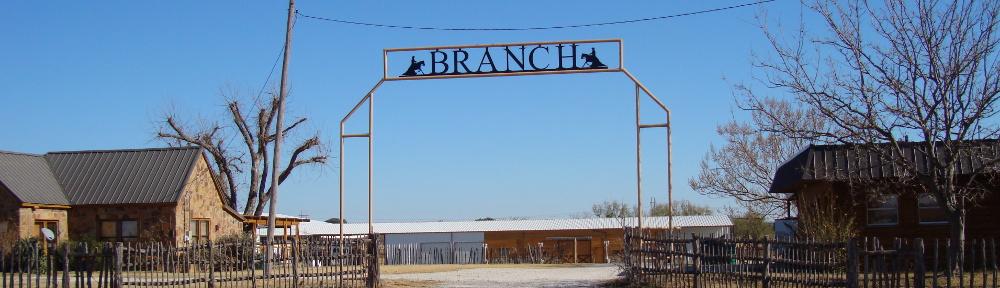 BranchEntrance_Header