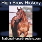high_brow_hickory